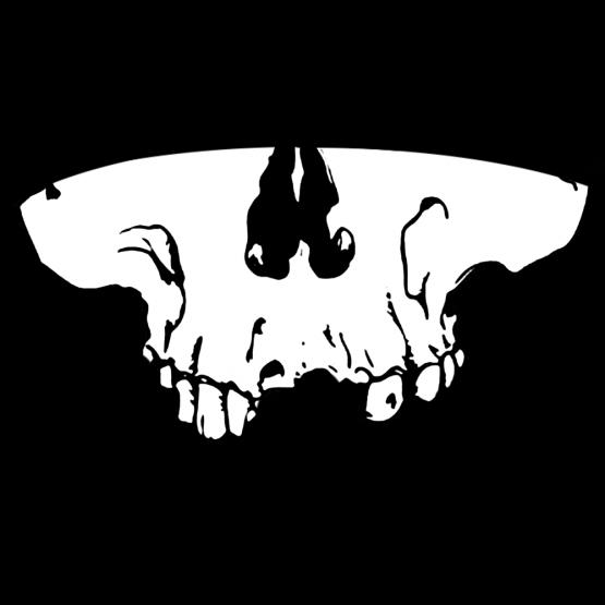 Mondkapje Skull